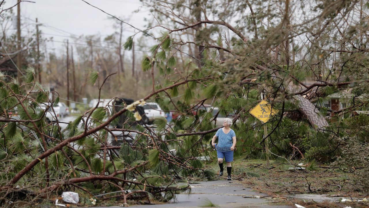 <div class='meta'><div class='origin-logo' data-origin='AP'></div><span class='caption-text' data-credit='AP Photo/Gerald Herbert'>Carol Ralph walks through downed trees blocking her heavily damaged neighborhood just after Hurricane Michael passed through in Panama City, Fla., Wednesday, Oct. 10, 2018.</span></div>