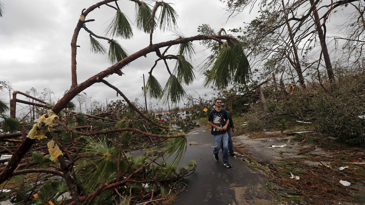 <div class='meta'><div class='origin-logo' data-origin='AP'></div><span class='caption-text' data-credit='AP Photo/Gerald Herbert'>People walk through downed trees in a heavily damaged neighborhood in the aftermath of Hurricane Michael in Panama City, Fla., Wednesday, Oct. 10, 2018.</span></div>