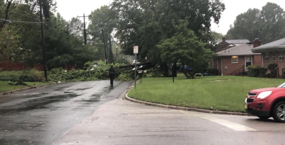 """<div class=""""meta image-caption""""><div class=""""origin-logo origin-image wtvd""""><span>WTVD</span></div><span class=""""caption-text"""">A tree fell in the road on Otis Street in Durham. (Courtesy of Yenmar Marks)</span></div>"""