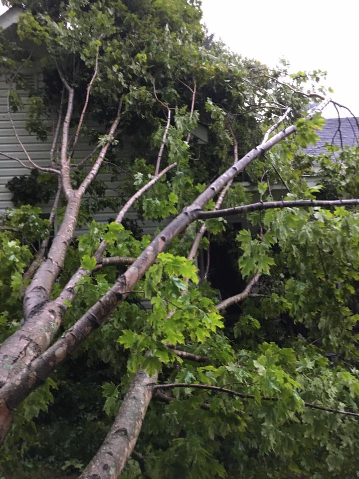 <div class='meta'><div class='origin-logo' data-origin='WTVD'></div><span class='caption-text' data-credit='Courtesy of Linda Strother'>A tree fell on a house in Oxford during fierce winds.</span></div>