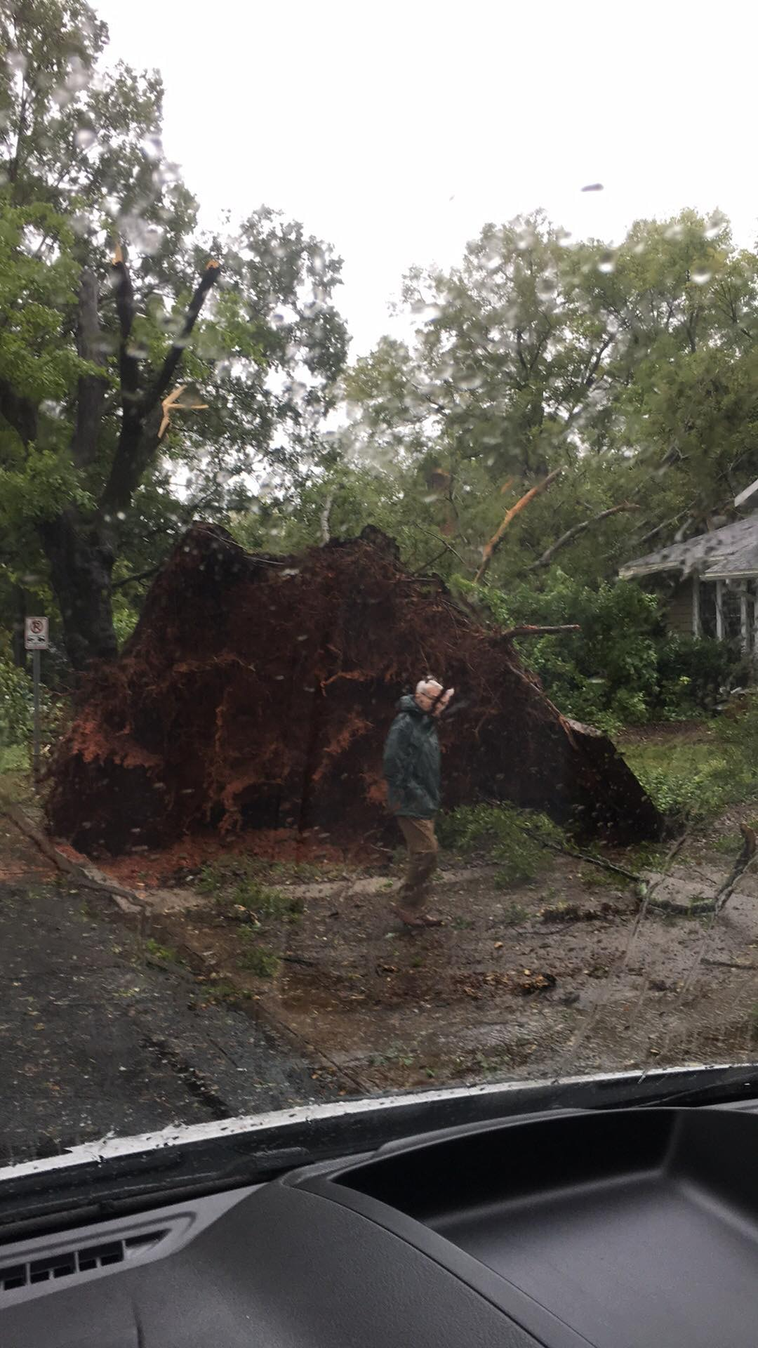 """<div class=""""meta image-caption""""><div class=""""origin-logo origin-image wtvd""""><span>WTVD</span></div><span class=""""caption-text"""">A large tree fell on East Kingston Avenue in Charlotte. (Courtesy of Jaquetta Howard)</span></div>"""