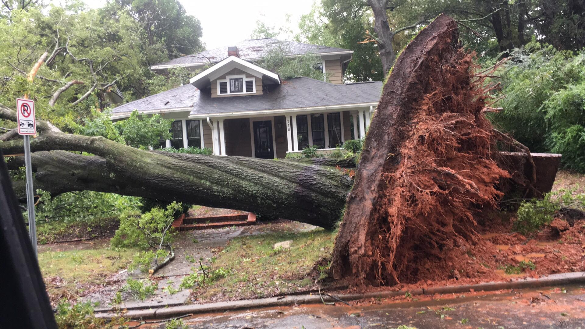 <div class='meta'><div class='origin-logo' data-origin='WTVD'></div><span class='caption-text' data-credit='Courtesy of Jaquetta Howard'>A large tree fell on East Kingston Avenue in Charlotte.</span></div>
