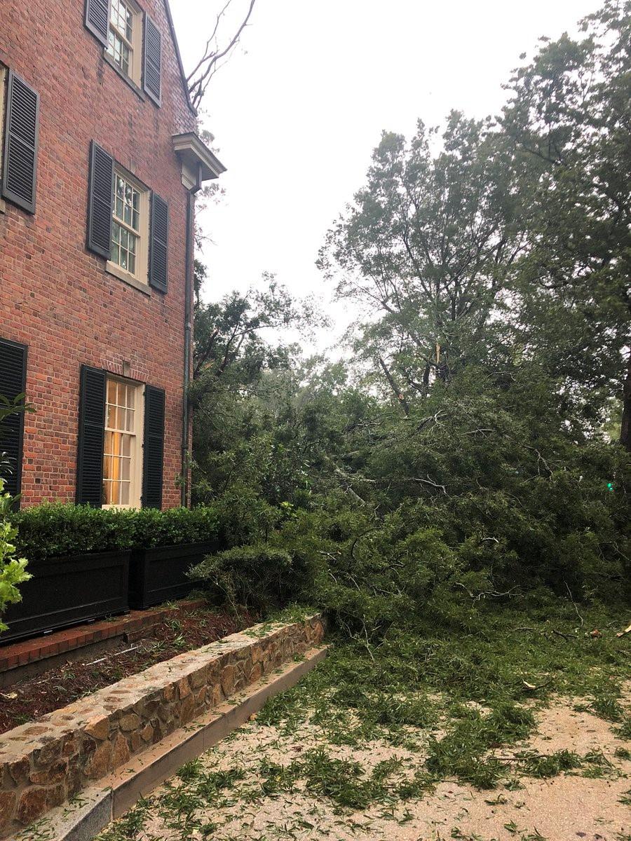 "<div class=""meta image-caption""><div class=""origin-logo origin-image wtvd""><span>WTVD</span></div><span class=""caption-text"">A large tree came crashing down at the Carolina Inn in Chapel Hill.</span></div>"