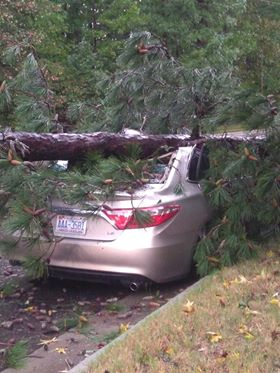 <div class='meta'><div class='origin-logo' data-origin='WTVD'></div><span class='caption-text' data-credit='Courtesy of Sam Haines'>A tree fell on a Toyota Camry in Chapel Hill.</span></div>