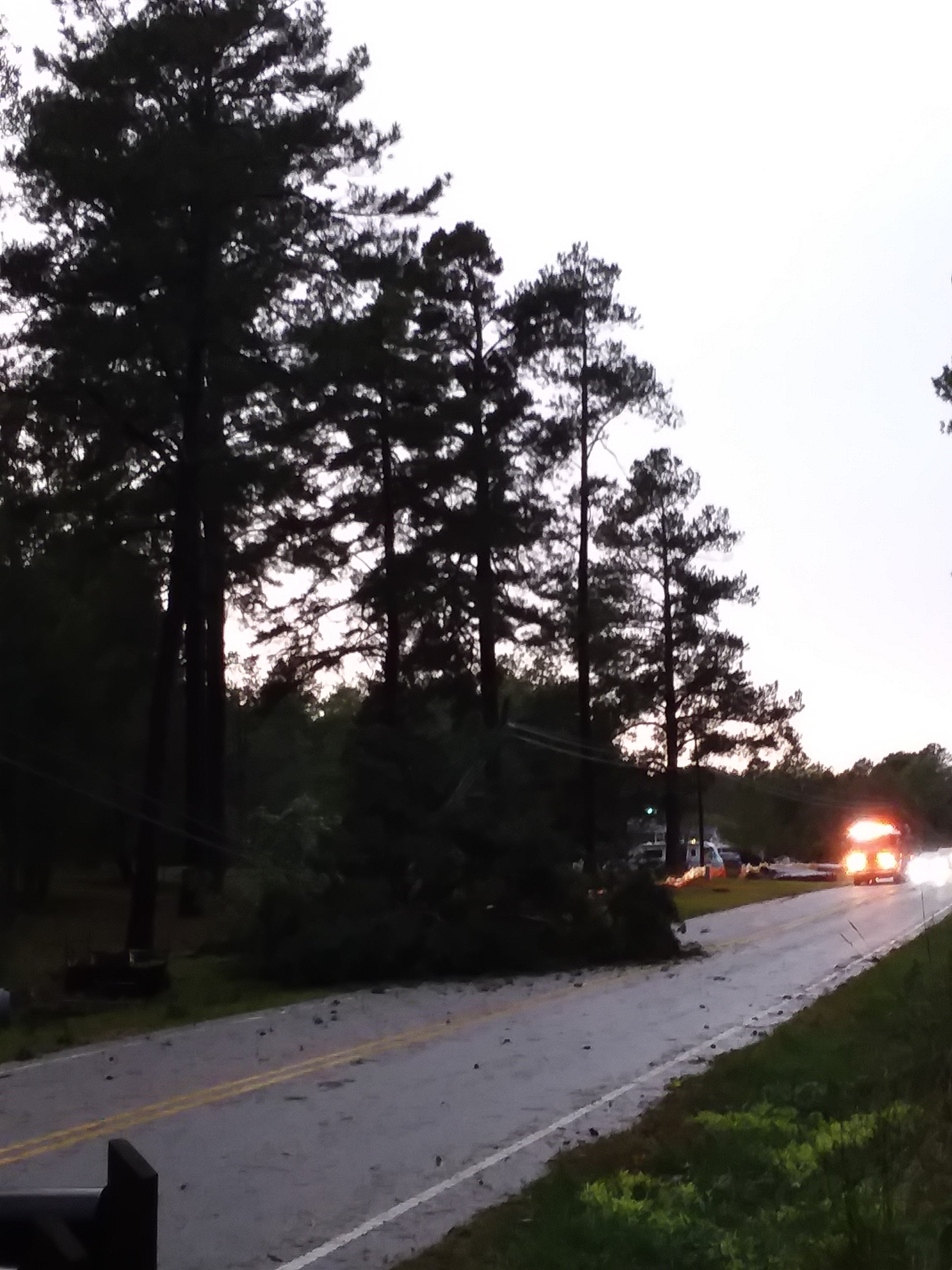 """<div class=""""meta image-caption""""><div class=""""origin-logo origin-image wtvd""""><span>WTVD</span></div><span class=""""caption-text"""">A tree fell in the middle of Wait Avenue in Wake Forest. (Courtesy of Dawn Tripp)</span></div>"""