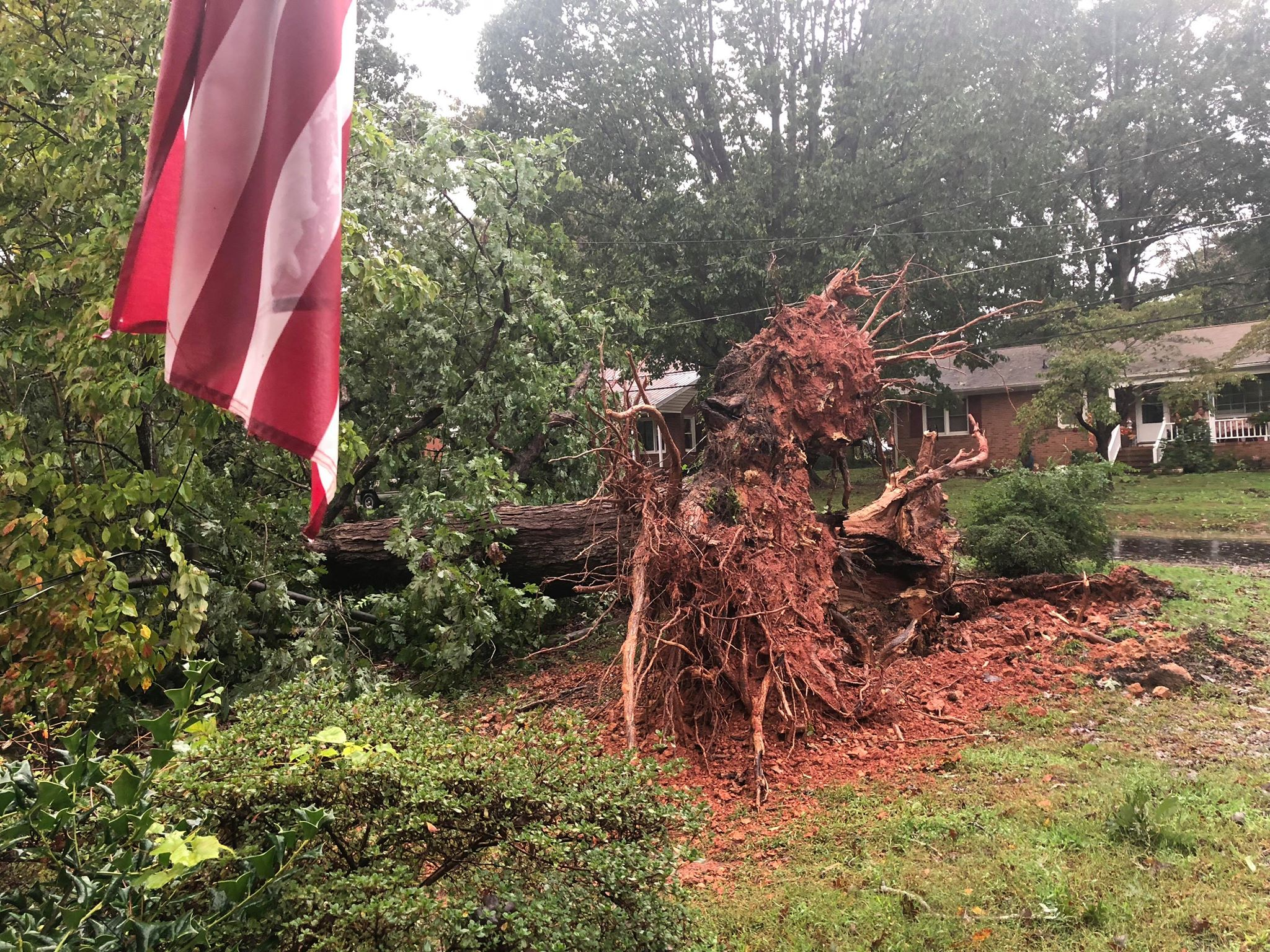 <div class='meta'><div class='origin-logo' data-origin='WTVD'></div><span class='caption-text' data-credit='ABC11 Eyewitness'>A large tree is down in Mebane.</span></div>