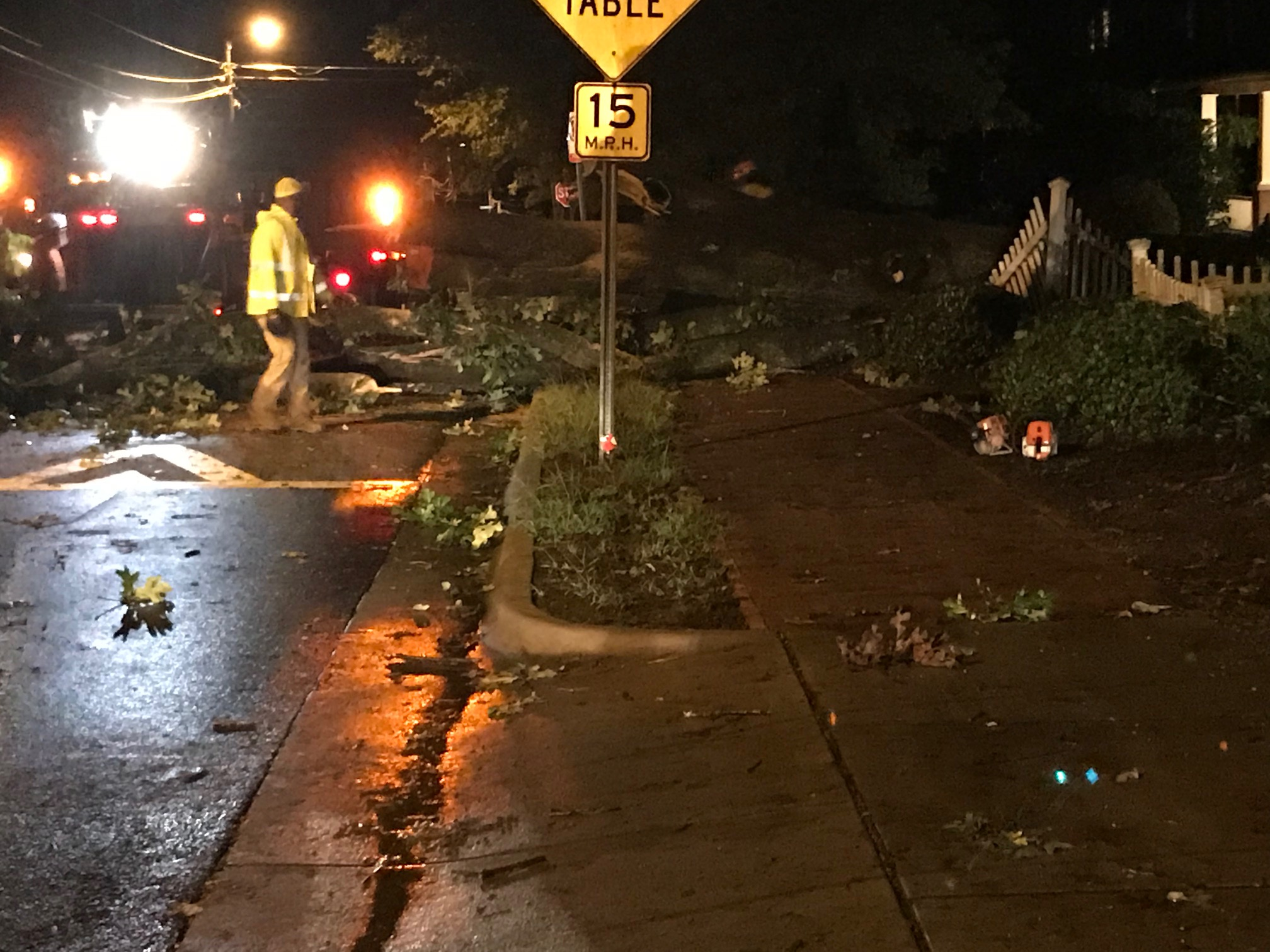 """<div class=""""meta image-caption""""><div class=""""origin-logo origin-image wtvd""""><span>WTVD</span></div><span class=""""caption-text"""">Michael leaves a mess in Chapel Hill with downed trees and power outages. (Josh Chapin)</span></div>"""