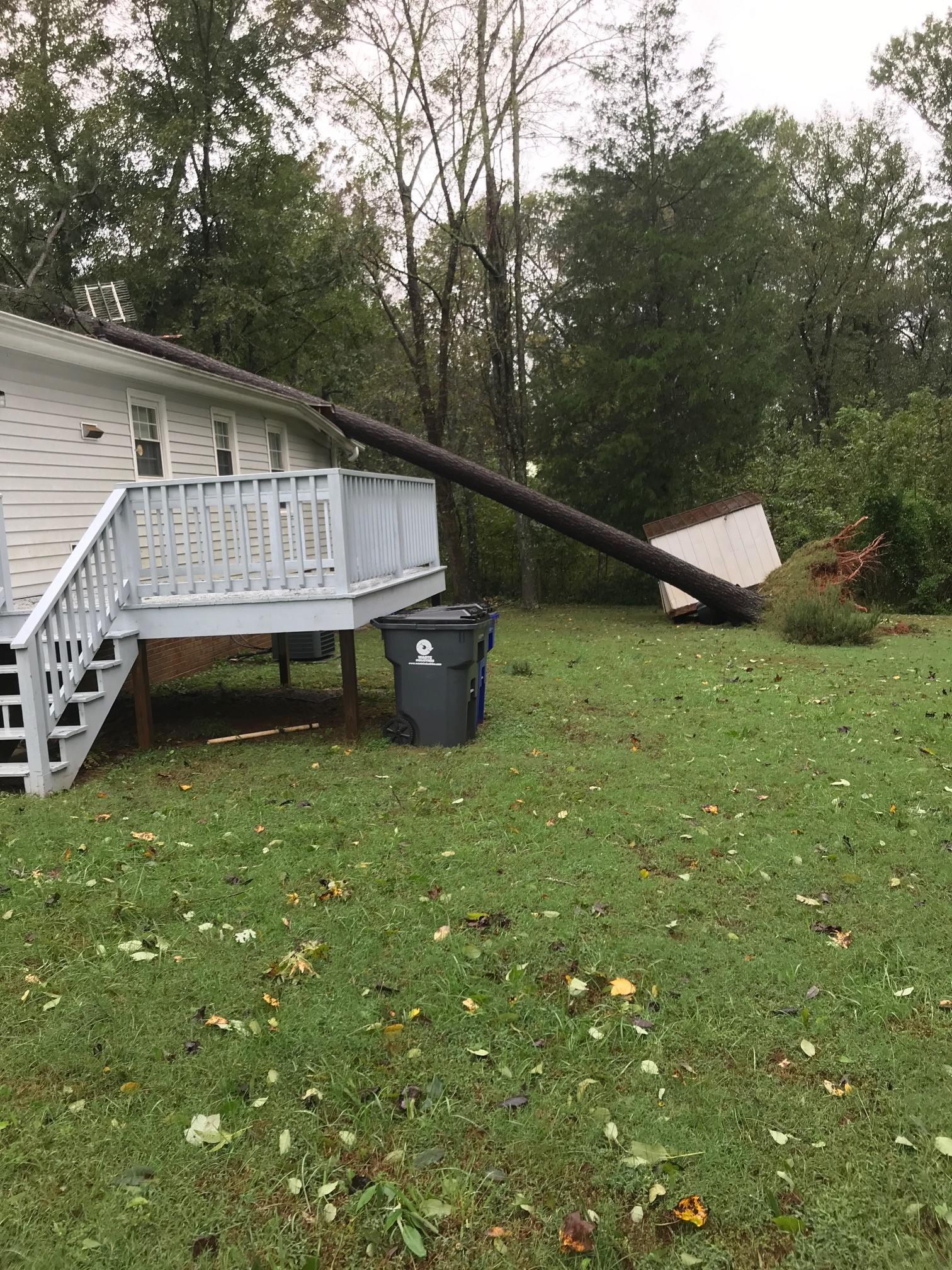 <div class='meta'><div class='origin-logo' data-origin='WTVD'></div><span class='caption-text' data-credit='Josh Chapin'>Michael leaves a mess in Siler City with downed trees and power outages.</span></div>
