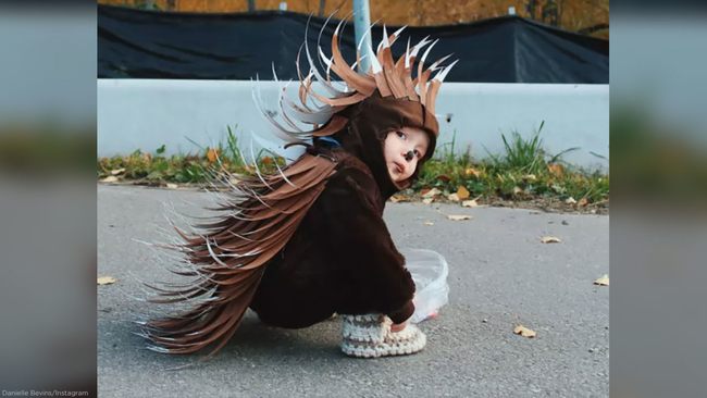 Mom knocks it out of the park with diy porcupine halloween costume mom knocks it out of the park with diy porcupine halloween costume for her toddler abc7 solutioingenieria Gallery