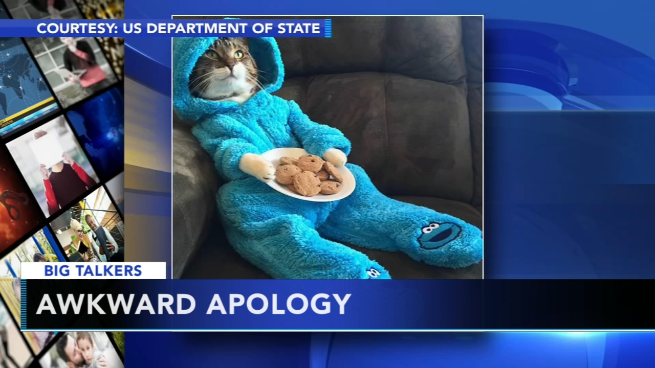 US Embassy Accidentally Sends Out Cat Pajama Party Invitation