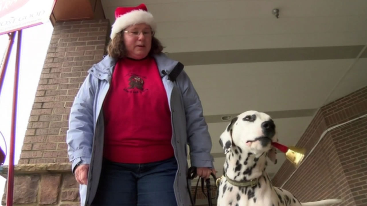 A woman's bell-ringing Dalmation doubles donations brought into the Salvation Army.