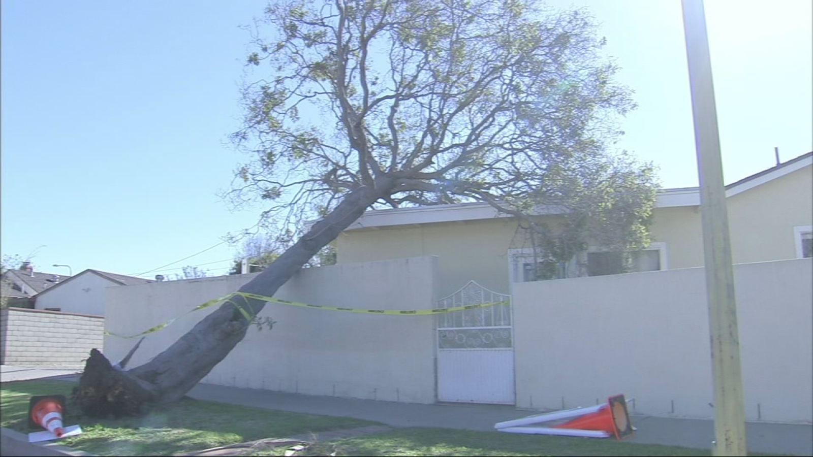 High Winds Cause Trees To Fall Power Outages In Southland