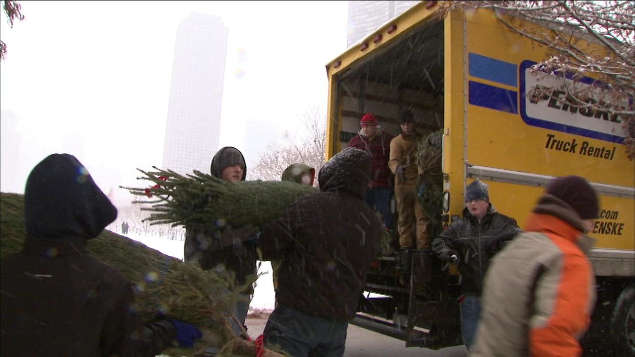 Christmas Tree Recycling Locations In Chicago Abc7chicago Com