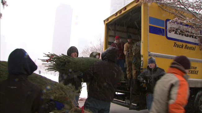 christmas tree recycling locations in chicago abc7chicagocom - Chicago Christmas Tree Recycling