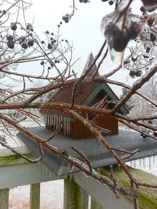 "<div class=""meta image-caption""><div class=""origin-logo origin-image ""><span></span></div><span class=""caption-text"">Bird feeder in Efland, NC during March ice storm. (iWitness Photo)</span></div>"