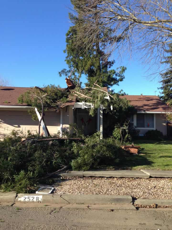 "<div class=""meta image-caption""><div class=""origin-logo origin-image ""><span></span></div><span class=""caption-text"">A tree that fell during heavy winds and hit a home is seen in Napa, Calif. on Tuesday, Dec. 30, 2014. (Image sent via uReport by Pandas Art and Gifts Napa Valley)</span></div>"