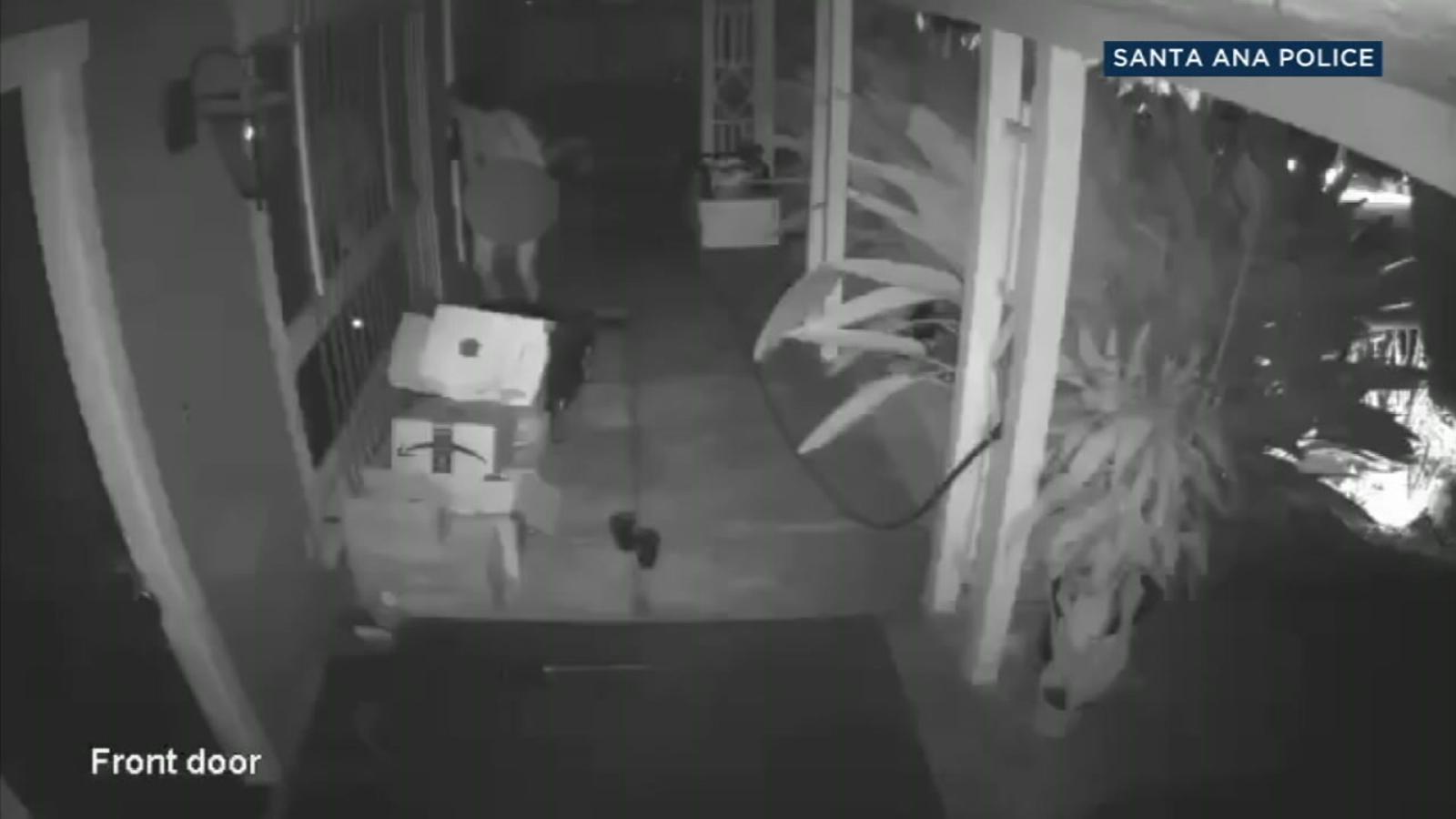 Naked prowler caught masturbating on surveillance video sought in Santa Ana