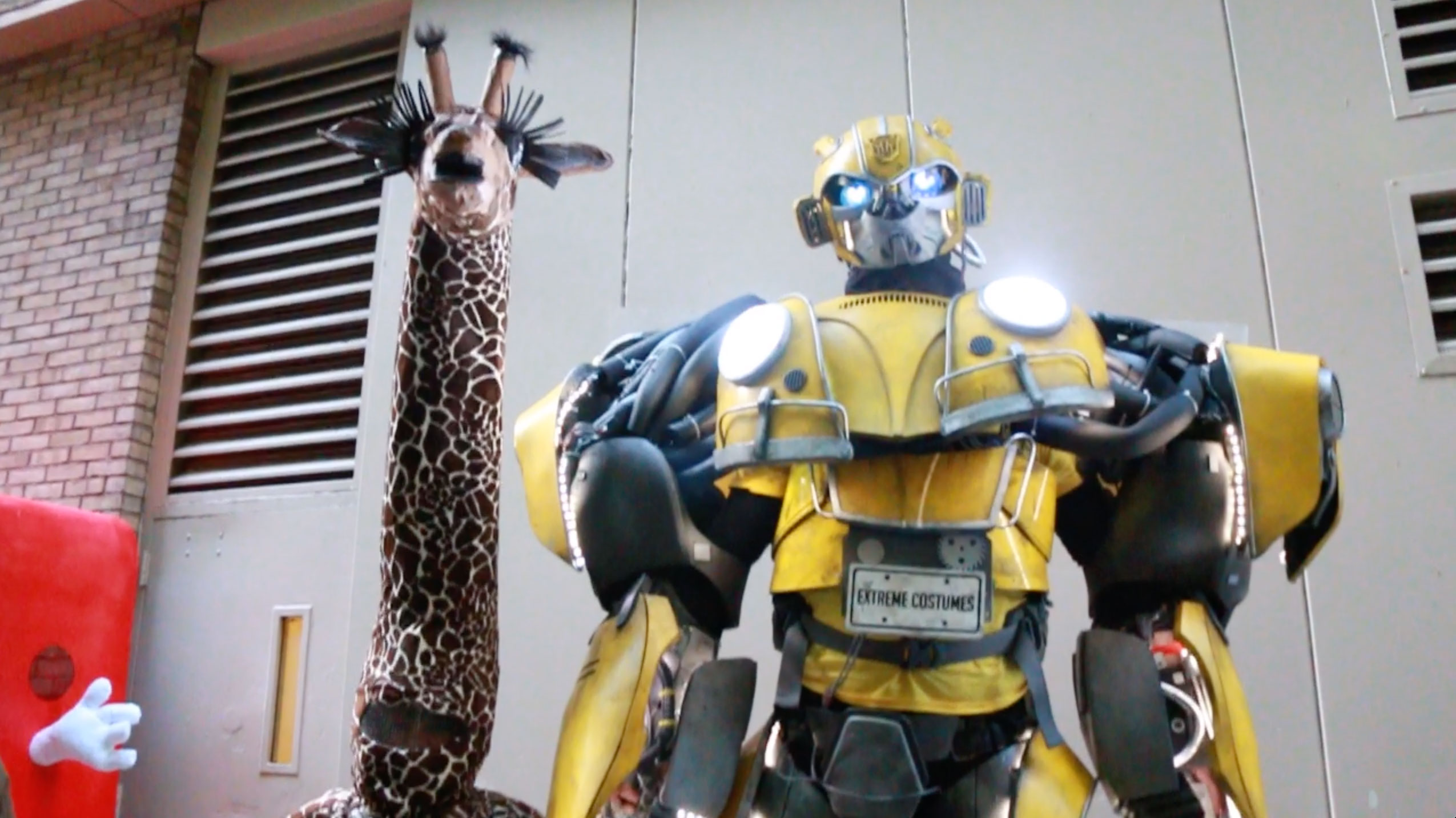 <div class='meta'><div class='origin-logo' data-origin='none'></div><span class='caption-text' data-credit=''>Bumblebee and Geraldine the Giraffe towered over many of the other contestants.</span></div>