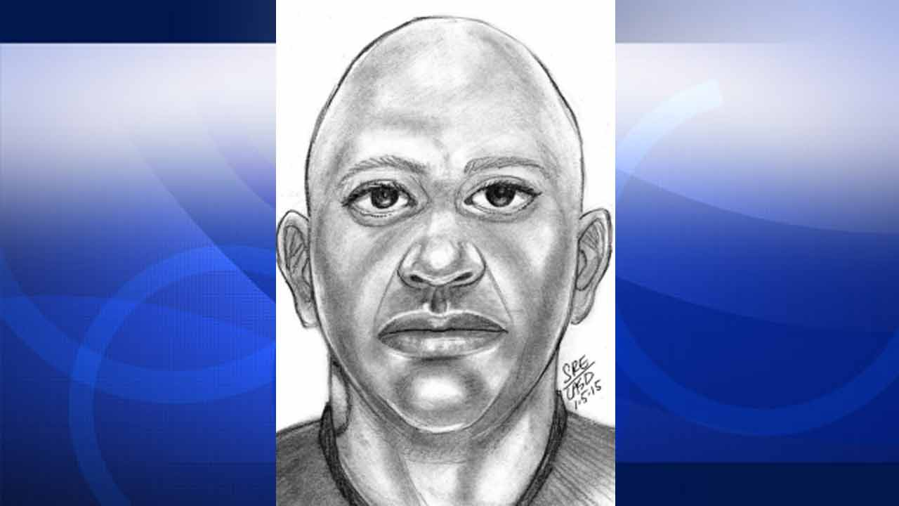 This composite sketch shows one of the three suspects accused of kidnapping and raping a 15-year-old girl near the town of Bassett on Friday, Jan. 2, 2015.