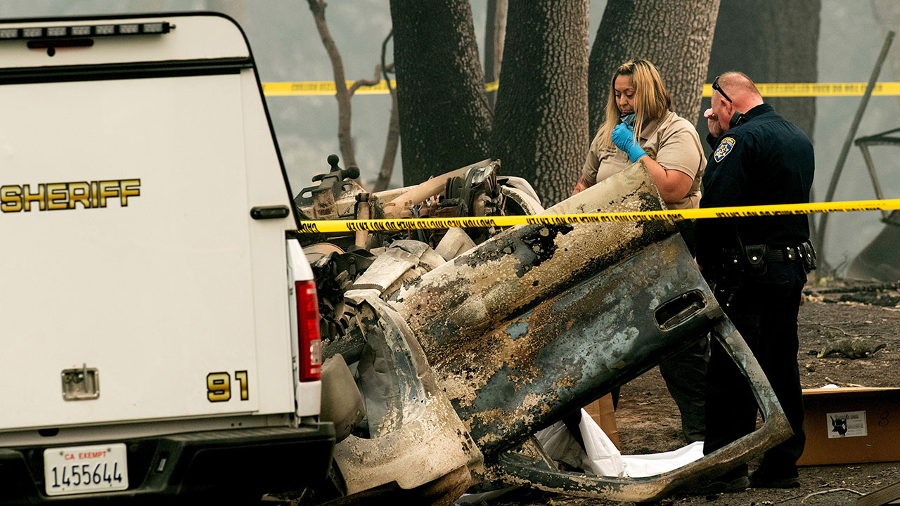 <div class='meta'><div class='origin-logo' data-origin='none'></div><span class='caption-text' data-credit='Noah Berger/AP Photo'>A sheriff's deputy recovers the remains of a Camp Fire victim from an overturned car in Paradise, Calif., on Thursday, Nov. 15, 2018.</span></div>
