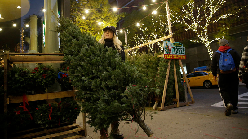 Christmas Tree In Nyc.Experts Predict Christmas Tree Shortage This Holiday Season