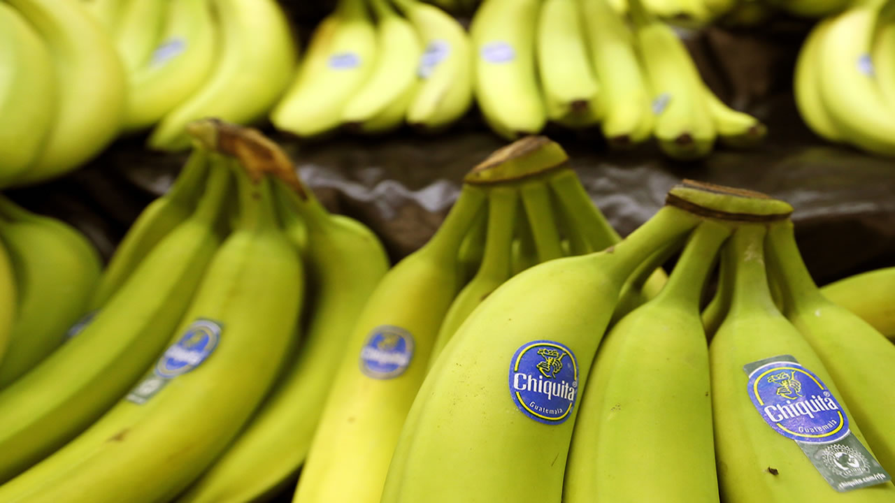 Bunches of Chiquita brand bananas are for sale at a grocery store in Zelienople, Pa. on Wednesday, Sept. 10, 2014.