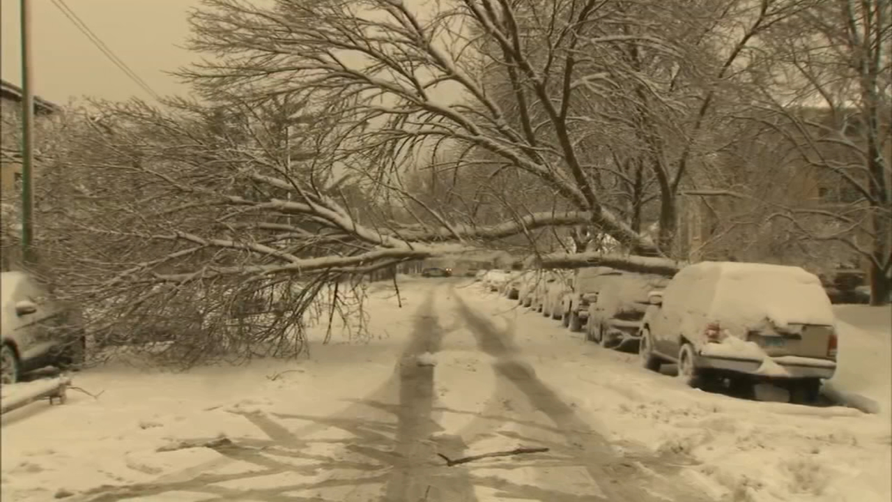 Image result for chicago snow storm