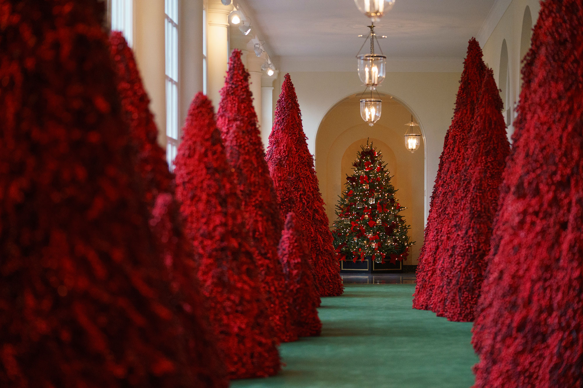 <div class='meta'><div class='origin-logo' data-origin='none'></div><span class='caption-text' data-credit='Carolyn Kaster/AP Photo'>Topiary trees line the East colonnade during the 2018 Christmas Press Preview at the White House in Washington, Monday, Nov. 26, 2018.</span></div>