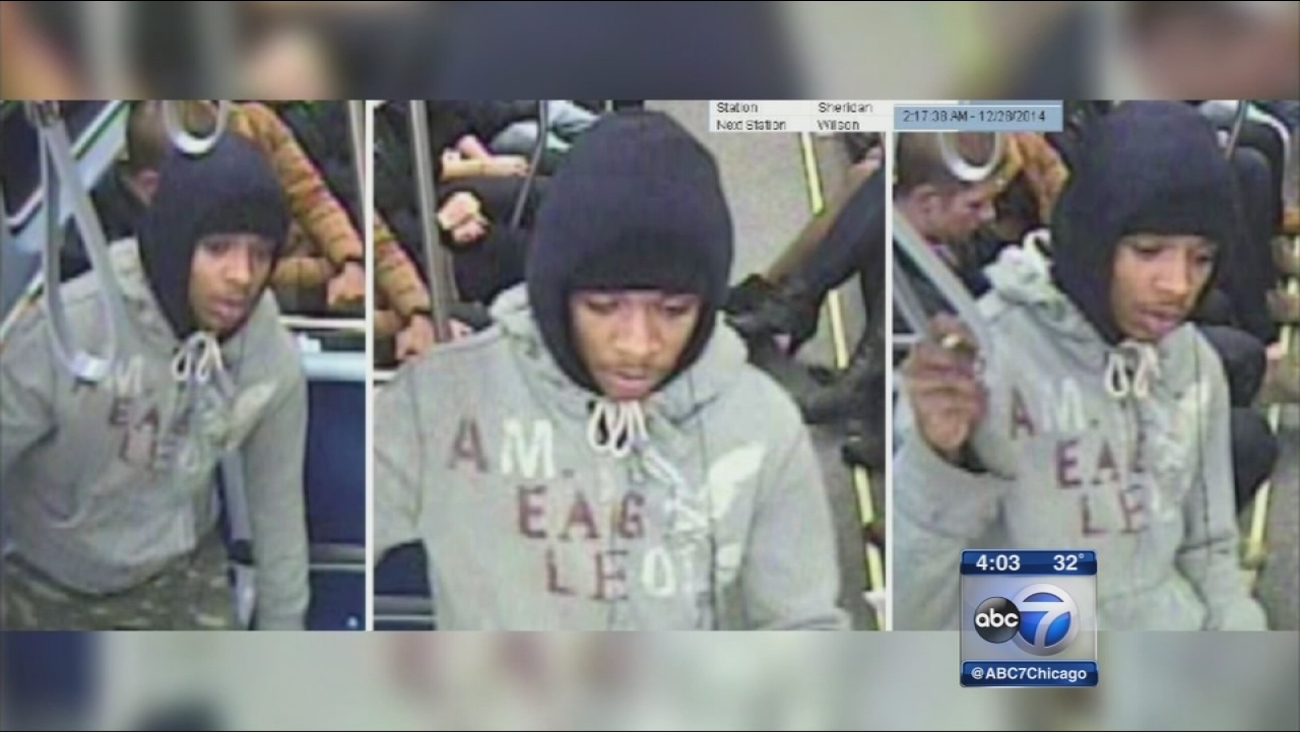 Photo released in CTA thefts