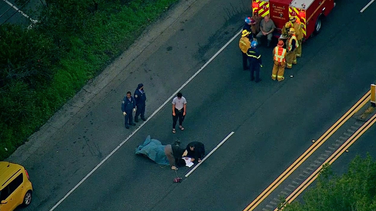 A mule that was struck by a car on the Pacific Coast Highway near Heathercliff Road in Malibu is being assessed by a veterinarian and its owner on Monday, Jan. 19, 2015.