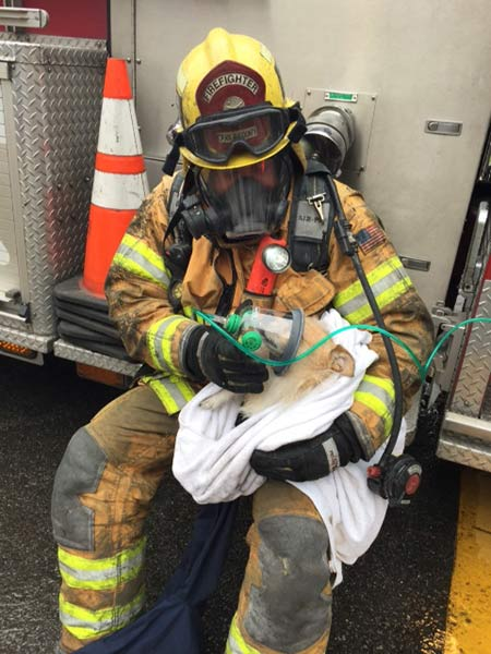 A firefighter gives oxygen to the family dog, who was found hiding in a drawer after the apartment fire was knocked down in San Juan Capistrano on Tuesday, Jan. 20, 2015.