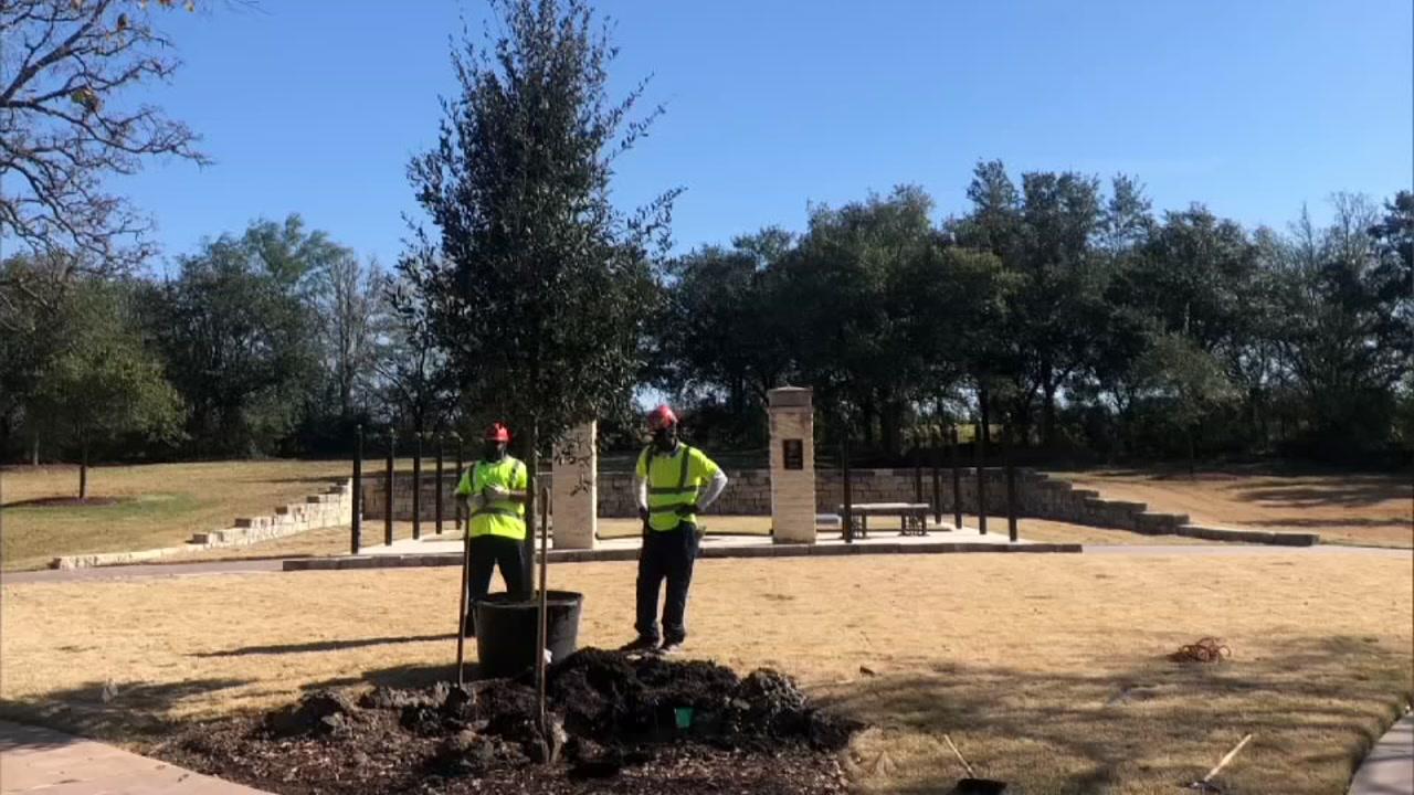 U S Trees Of Texas Provides Live Oak Tree For Pres George Hw Bush