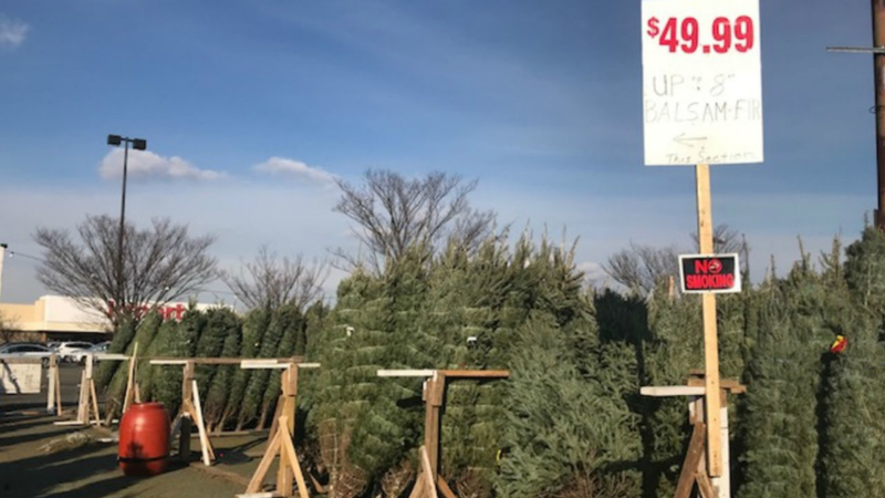 Small Christmas Tree Vendors Battling Higher Tree Prices Box Store Competition