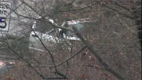 1 dead when car slams into tree in Doylestown