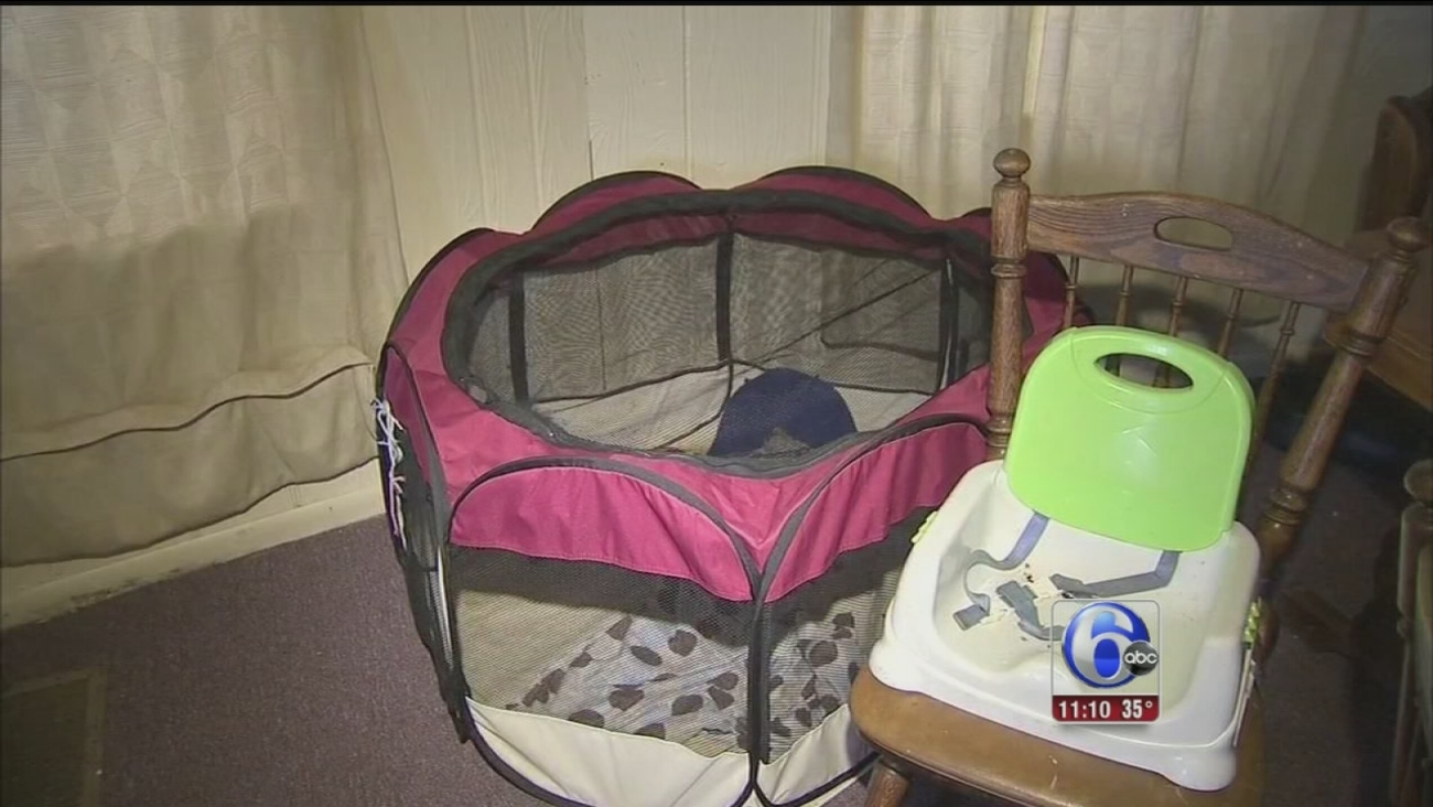 VIDEO: Baby attacked by ferrets in Darby home