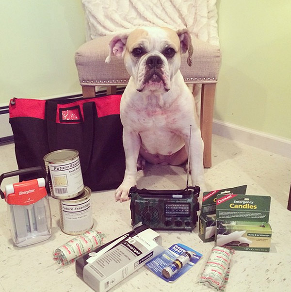 "<div class=""meta image-caption""><div class=""origin-logo origin-image none""><span>none</span></div><span class=""caption-text"">Breaking out daddy's emergency kit for the impending #blizzard Stay safe (and inside!!!) friends #macjones #juno #winterstorm (macjonesthebulldog/Instagram)</span></div>"