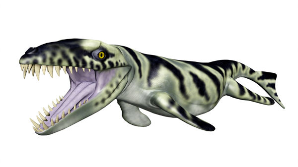 """<div class=""""meta image-caption""""><div class=""""origin-logo origin-image none""""><span>none</span></div><span class=""""caption-text"""">Dakosaurus is part of an extinct family of crocodile that were was adapted for ocean living more than 150 million years ago.</span></div>"""