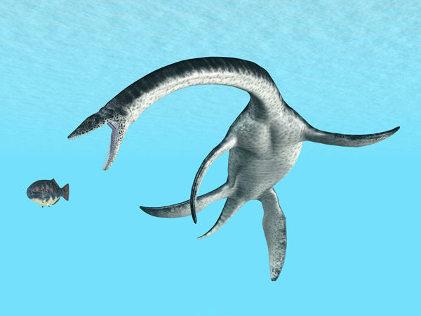 """<div class=""""meta image-caption""""><div class=""""origin-logo origin-image none""""><span>none</span></div><span class=""""caption-text"""">Plesiosaurus is a small headed marine reptile known for his long and slender necked, broad turtle-like body, short tail and two pairs of large, elongated paddles.</span></div>"""
