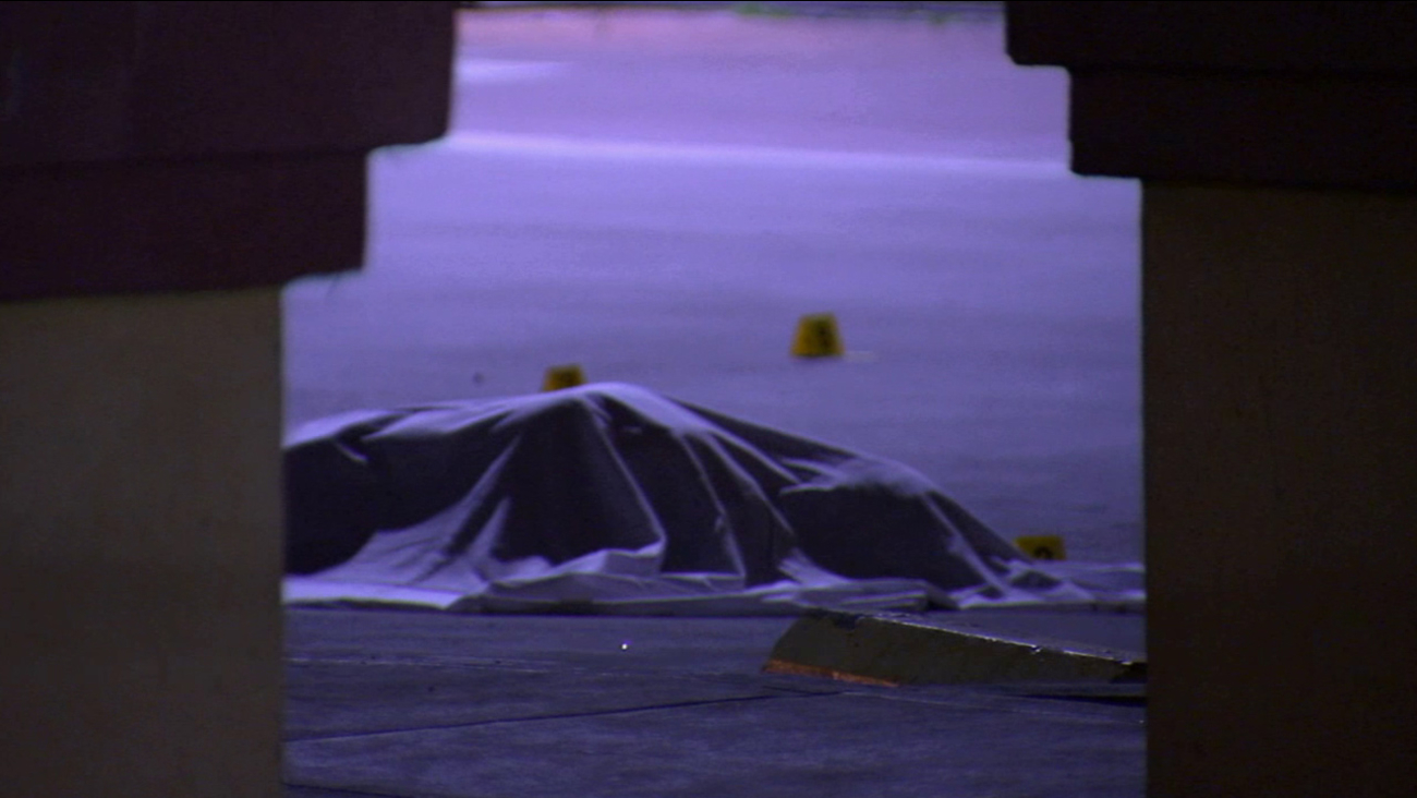 A woman's body is covered with a sheet. She was found dead with multiple stab wounds in Pacoima on Wednesday, Jan. 28, 2015.
