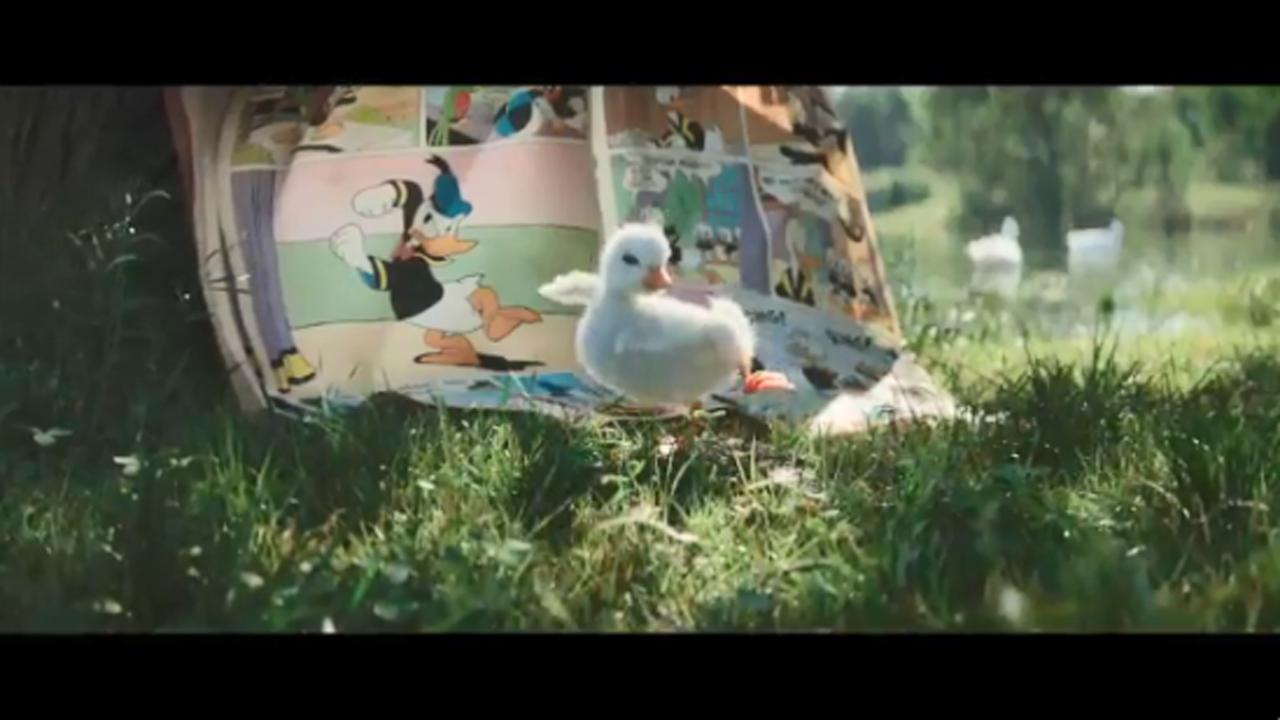 Edge Company Direct Duckling