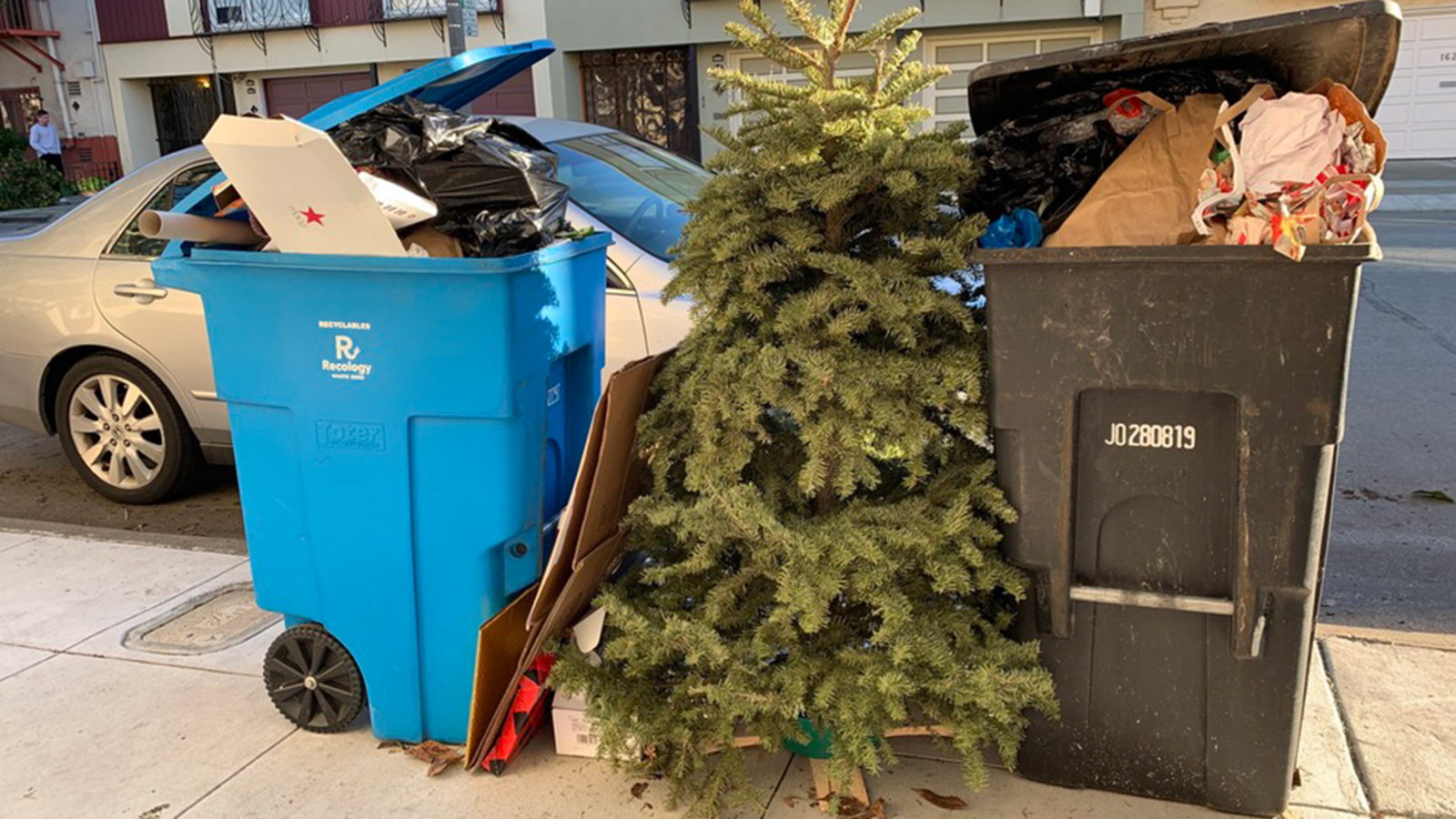 When Should You Take Down Christmas Tree.Sf Officials Say Hold On To Your Christmas Trees A Bit Longer