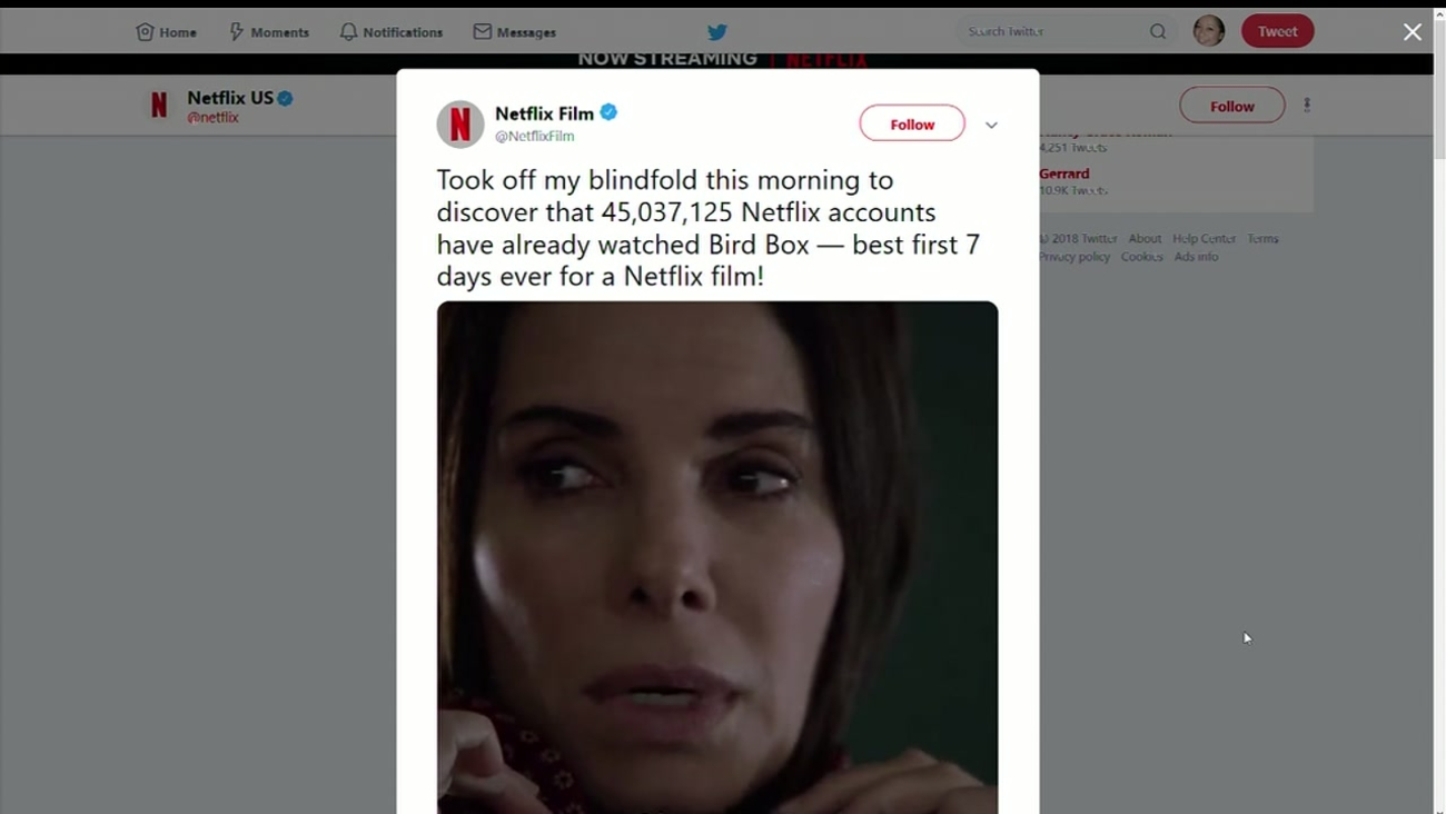 Bird Box Sets New Netflix Viewing Record In Its First Week