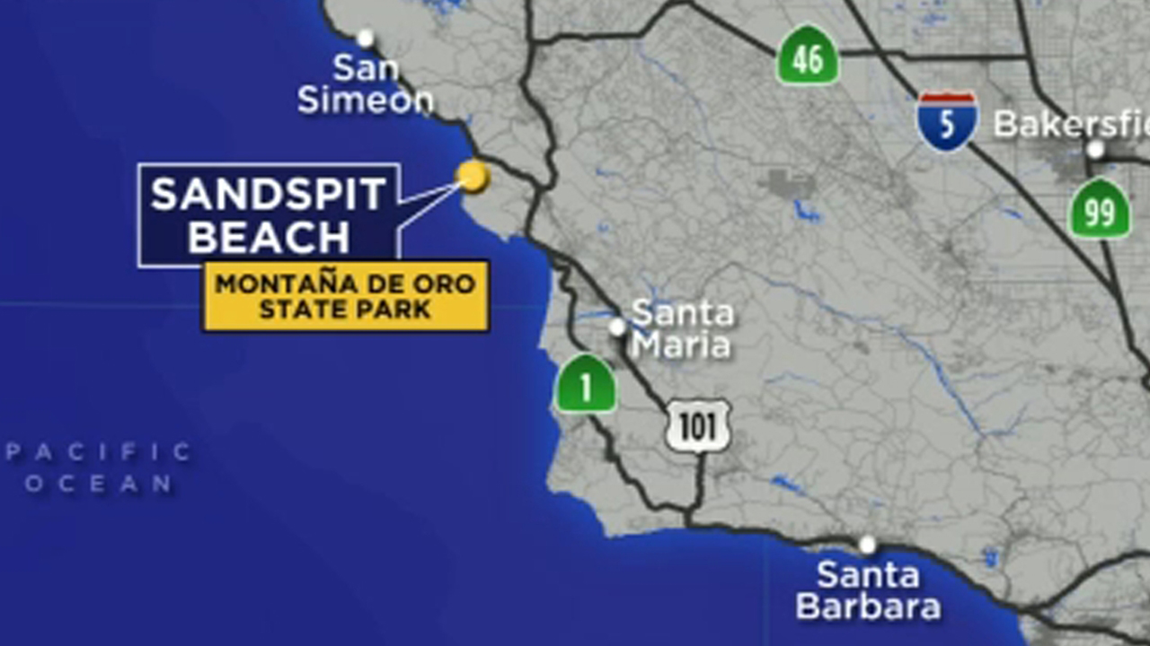Rancho Palos Verdes teen survives shark attack near San ...
