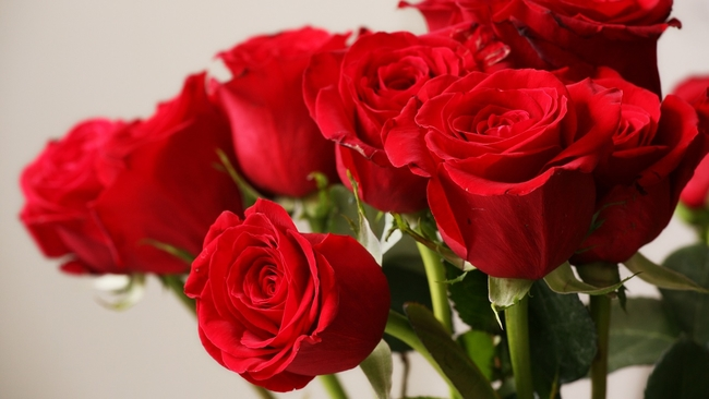 Friday Faves Houstons Top 10 Florists Abc13