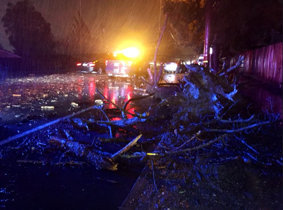 <div class='meta'><div class='origin-logo' data-origin='none'></div><span class='caption-text' data-credit='KGO-TV'>A powerful storm brought down power lines and trees all around the Bay Area.</span></div>