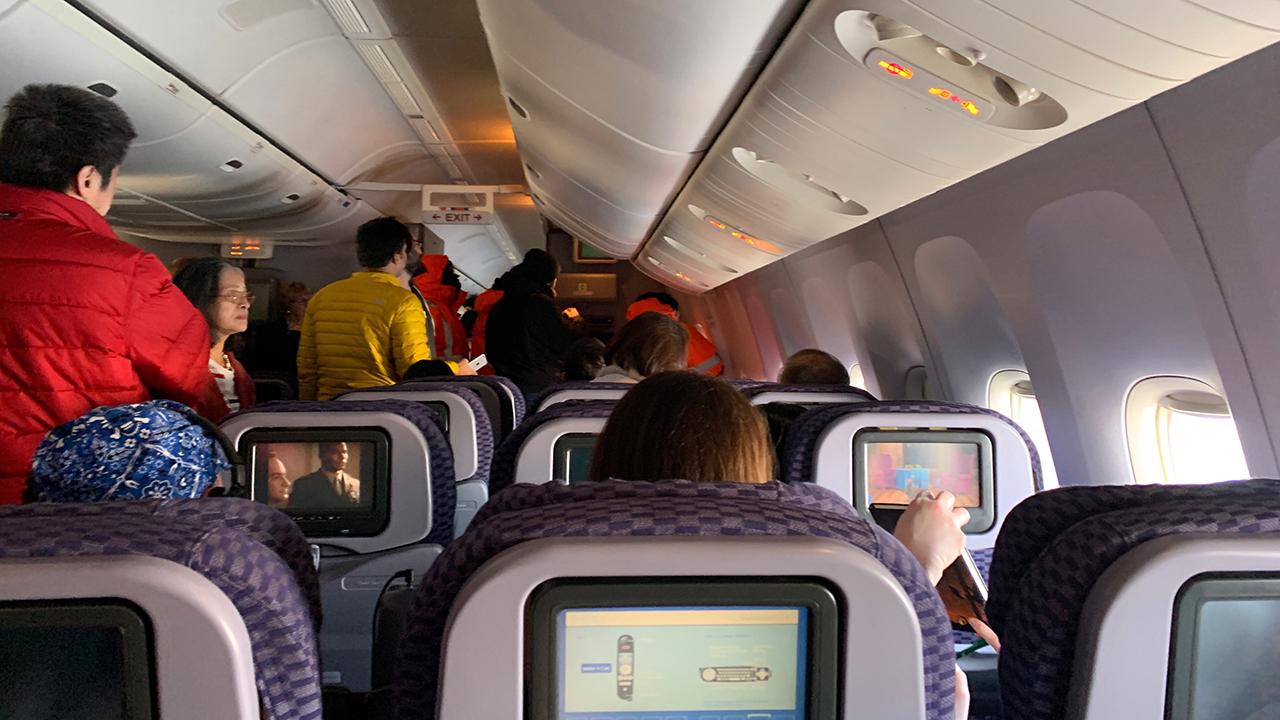 Swimwear United Airlines Naked Passenger Images