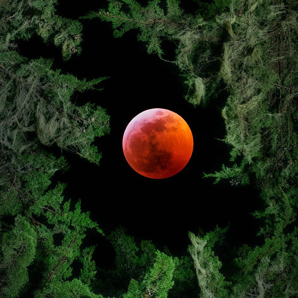 <div class='meta'><div class='origin-logo' data-origin='none'></div><span class='caption-text' data-credit='Photo submitted to KGO-TV by paulkozal/Instagram'>A rare super blood wolf moon lit up the sky in the Bay Area on Sunday, Jan. 20, 2019 through Monday, Jan. 21, 2019.</span></div>