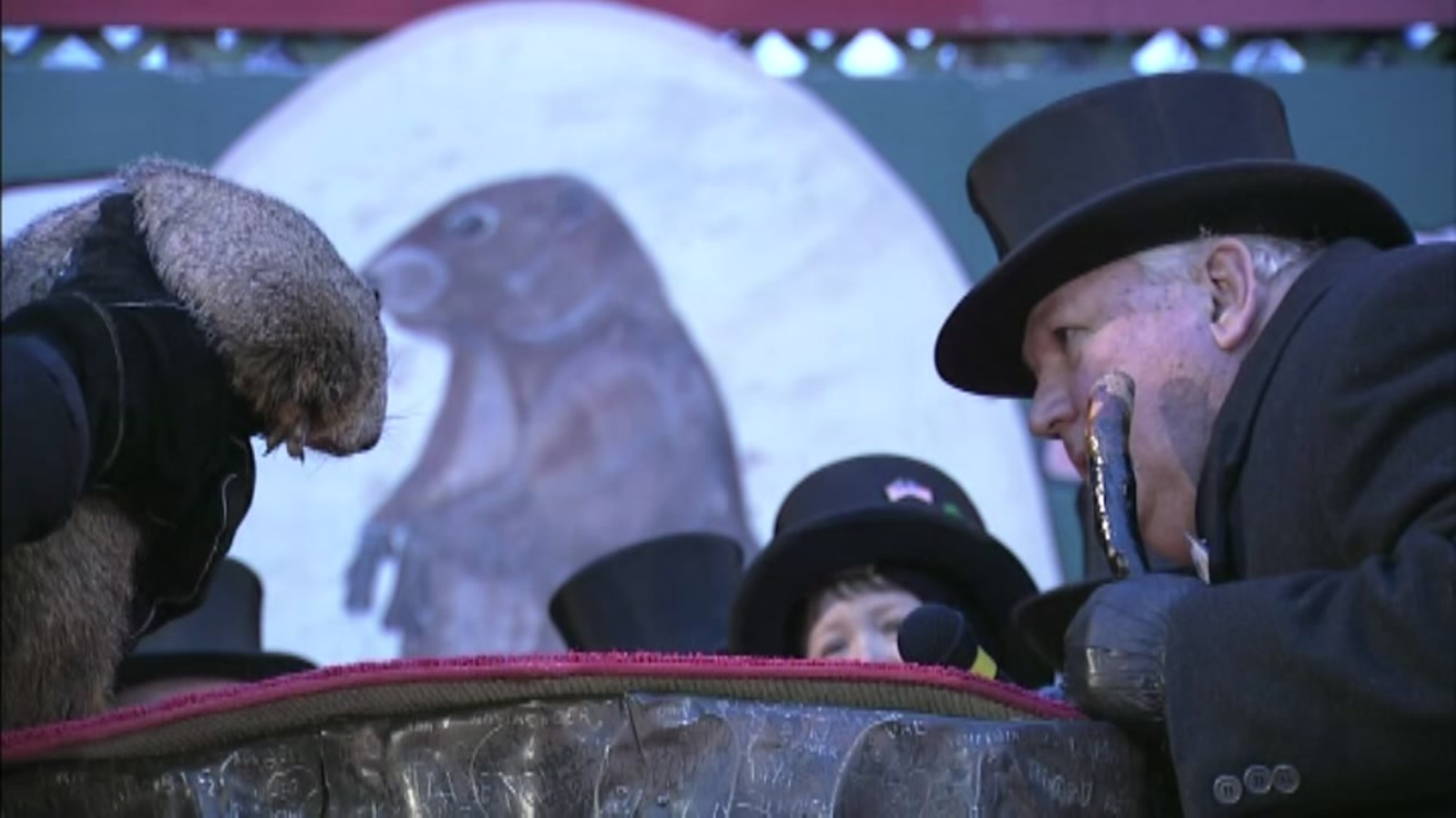 It's Groundhog Day! Punxsutawney Phil did not see his ...
