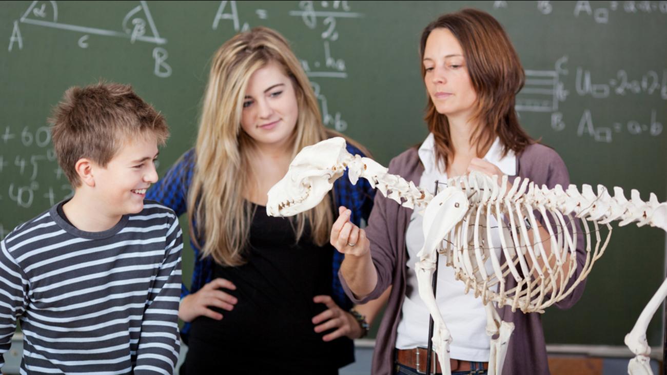 Teacher and dinosaur