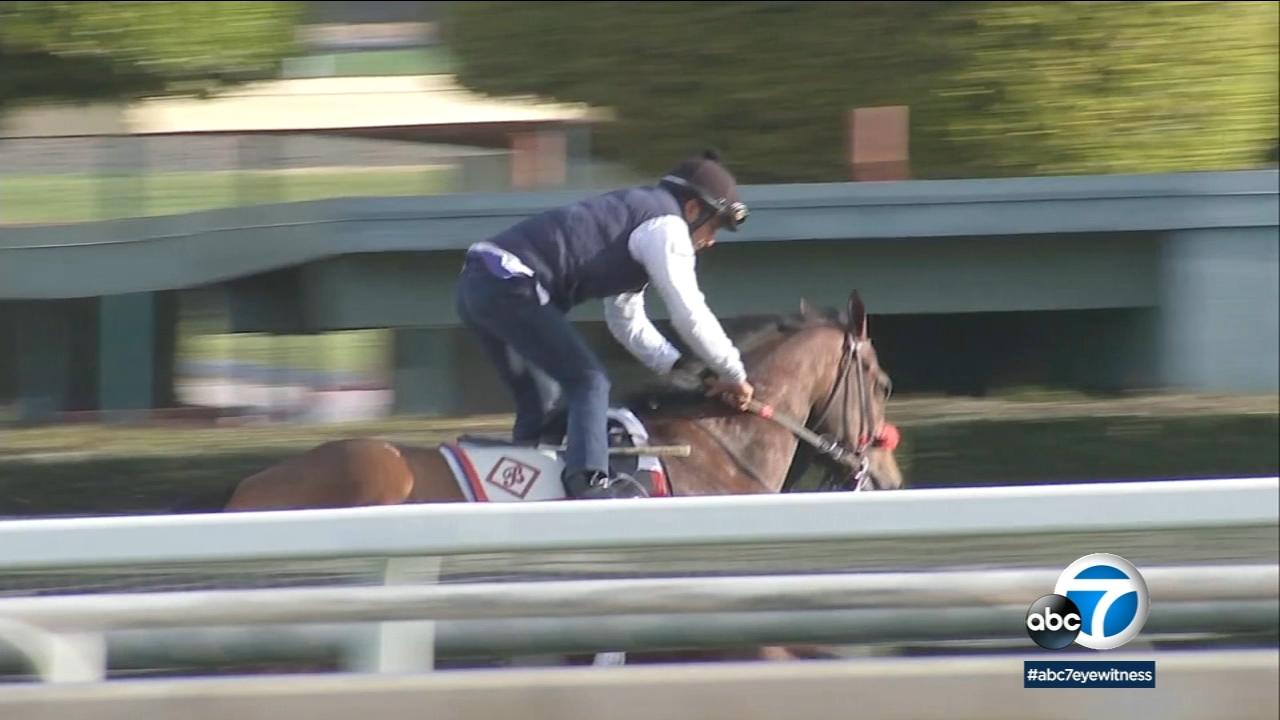 Santa Anita Track Concerns 19 Horses Die In 2 Months